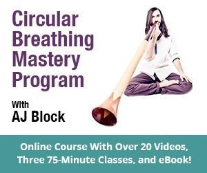 Circular Breathing Course with over 20 videos, classes and eBook