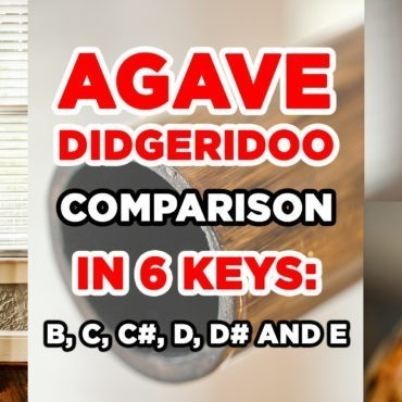 Agave Didgeridoo Comparison Video